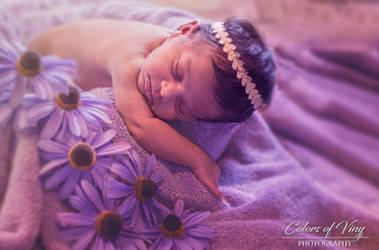 The lil princess