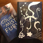 Mist and Fury by feyrecursebreaker