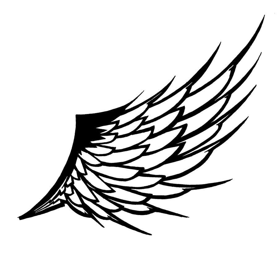 Line Drawing Wings : Wing by ruijicross on deviantart
