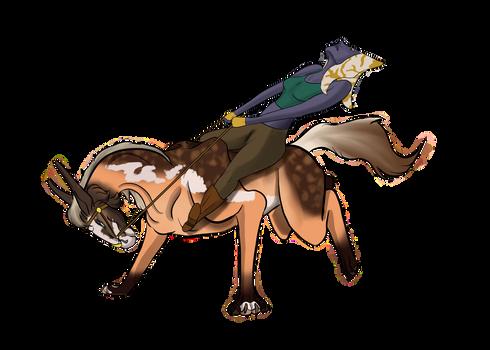 Zeka's Ride