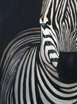 Zebra II by ExtremeSi