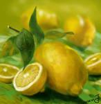 Speed Paint - Lemon Party by MigrantJ
