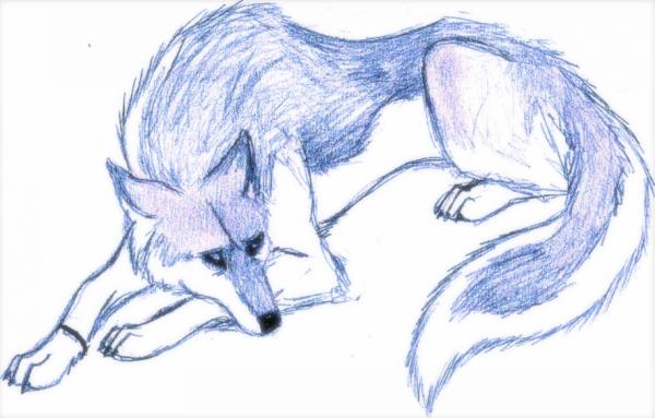 Depressed wolf drawing - photo#31