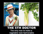 Doctor Who - The 5th Doctor