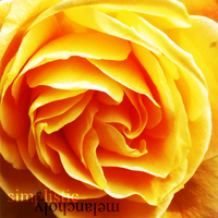 Roses Are Orange by SimplisticMelancholy