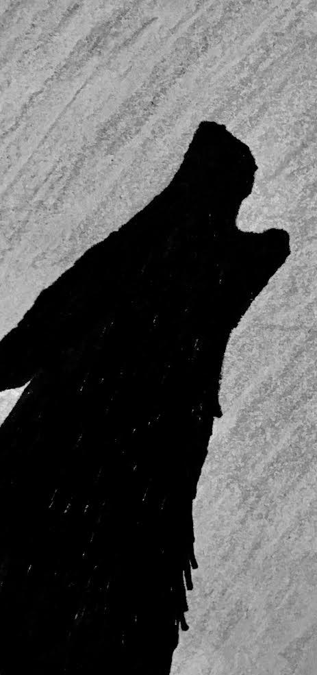 Shadow on the Moon by One-EyedHawk