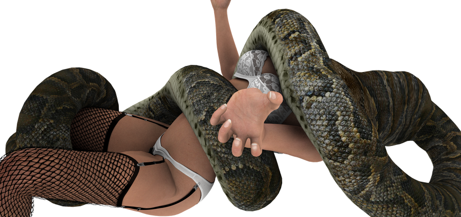 Lingerie snake vore 1 by swiftbladez
