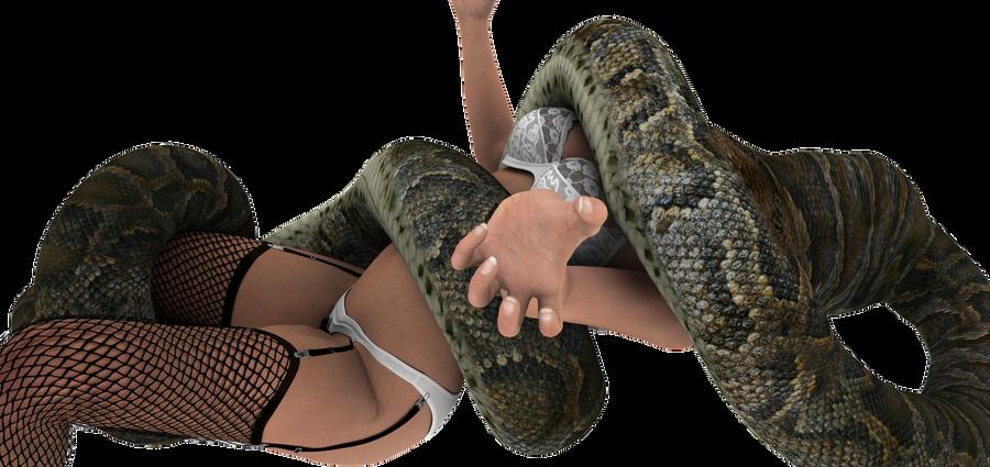 Lingerie snake vore 1 by swiftbladez