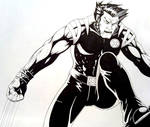 early wolverine