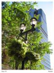 Streetlamp - Philadelphia