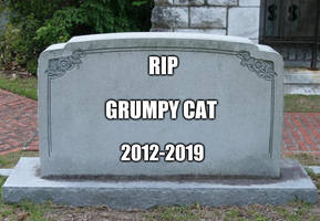 RIP Grumpy Cat 2012-2019 by EarWaxKid