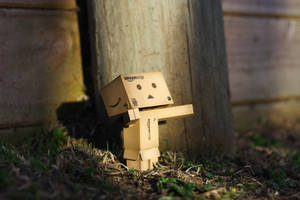 Danbo's enlightenment III by pilwe