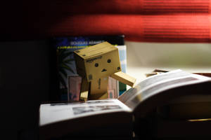 Bedtime stories by pilwe