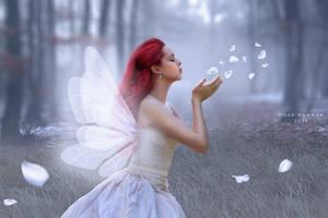 An angel by DoaaHammam