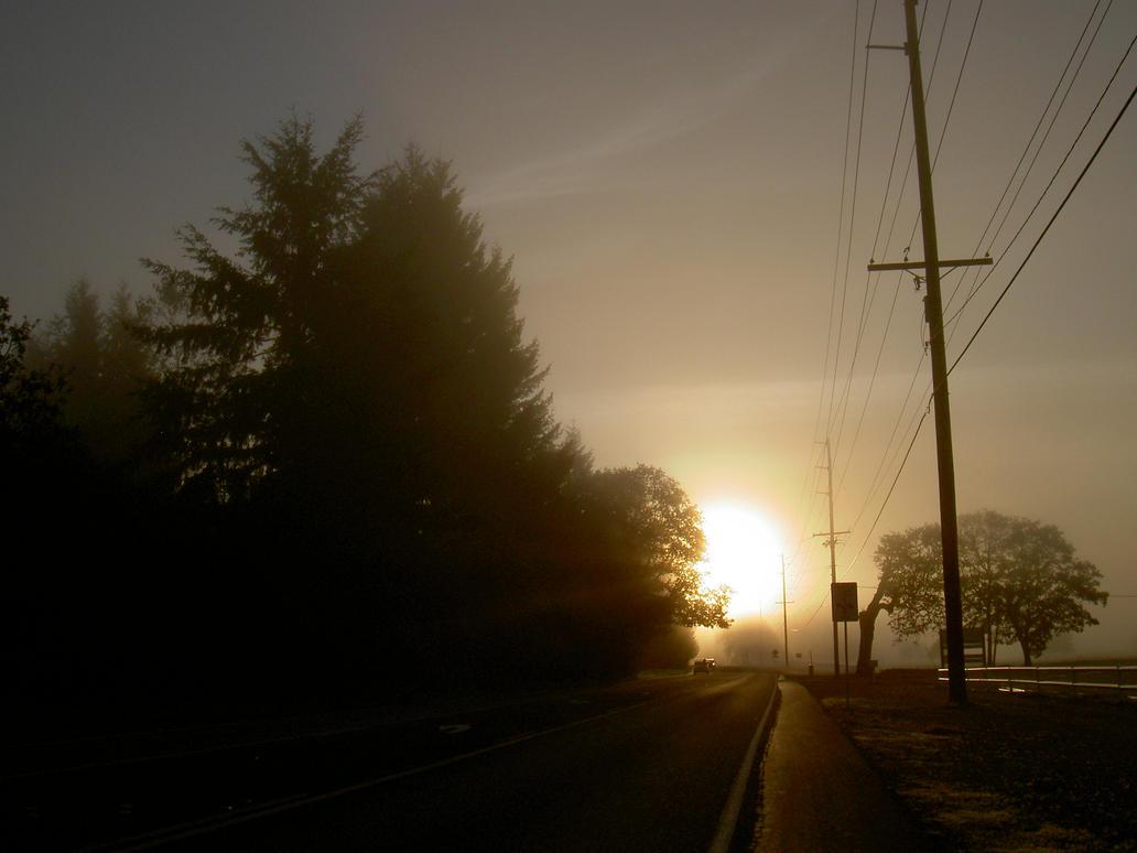 Foggy Drive by mebyrne57