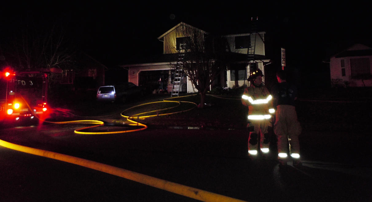 Two dogs lose their life in house fire by mebyrne57
