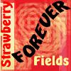 Beatles - Strawberry Fields by jjjean65