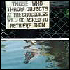Signs - crocodile by jjjean65