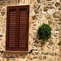 GREEN INSIDE by epsdesign