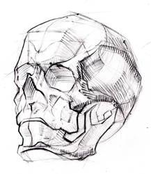 Skull (Study) 2