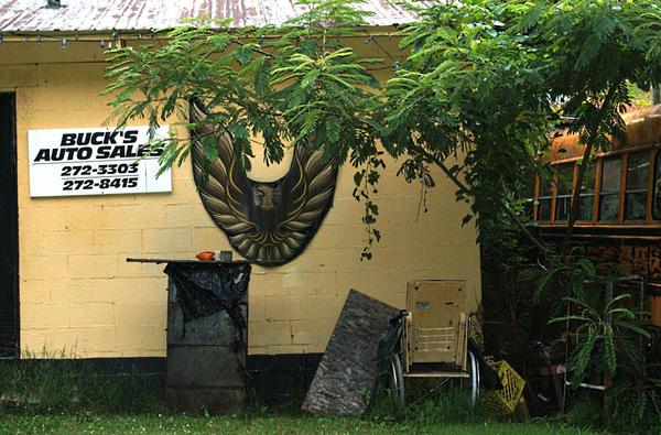 Firebird Eagle by Ranald101