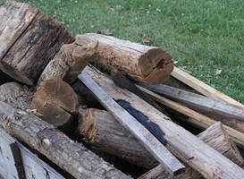 WoodPile by Ranald101