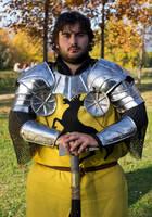 Asoiaf - Robert Baratheon by BonniePilgrim