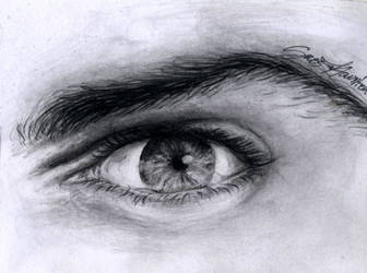 Eye Sketch by Sass-Haunted