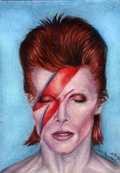 Ziggy Played Guitar