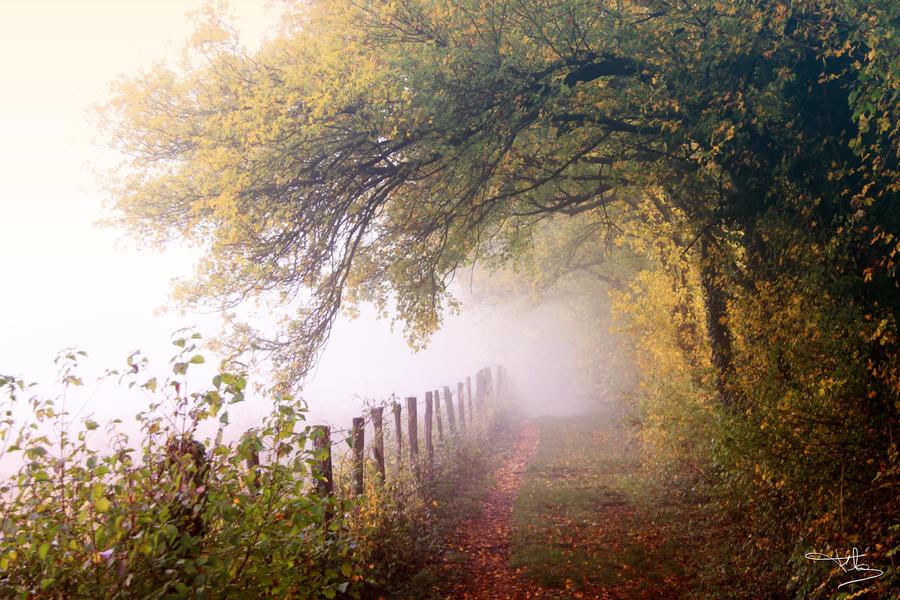 Autumn time 3 by floflo
