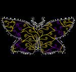Swirls and Silk - Intersex Flag Butterfly