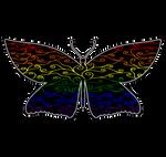 Swirls and Silk - LGBTQ Flag Butterfly