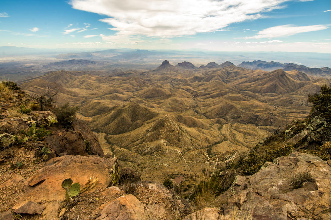 big bend national park buddhist dating site Big bend's location, near the 100th meridian in the middle of the continent and  along a migration route, is ideal for bird diversity throughout the.