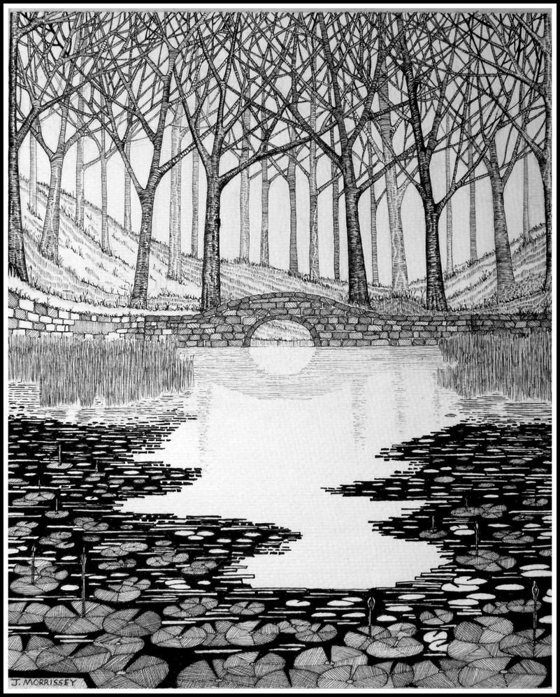 Woodland Pond By Penandinkdrawings On Deviantart