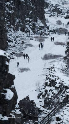 Winter's Path 1