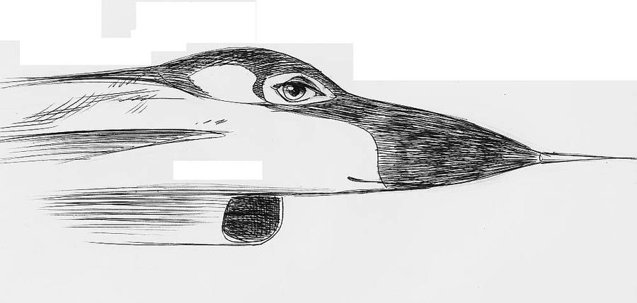 Head study of Suki by amberchrome
