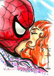 Mary Jane Spider-Man Sketch