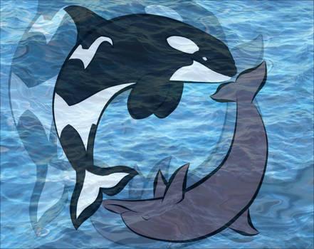 whaledolphin   Explore whaledolphin on DeviantArt