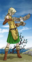Safira and her falcon by boudicca
