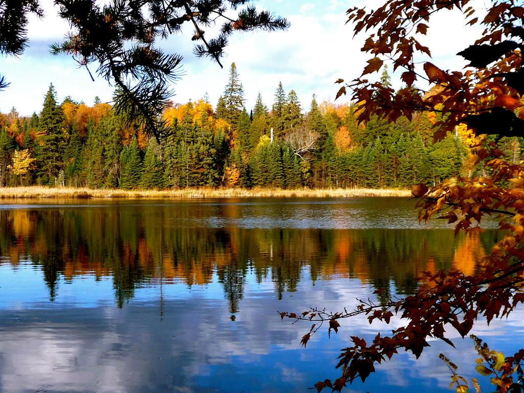 autumn lake by minamiko
