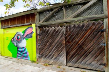 alley bunny