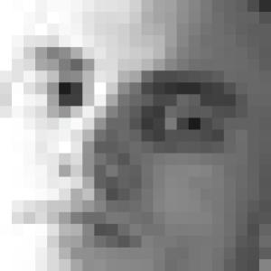 araeru's Profile Picture