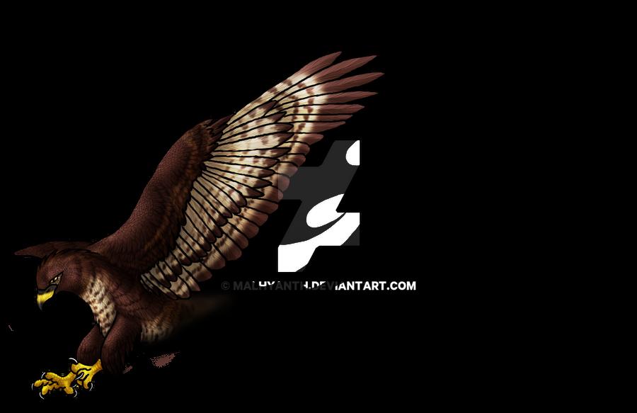 UPDATE : Flying Buzzard Tattoo by Malhyanth on DeviantArt