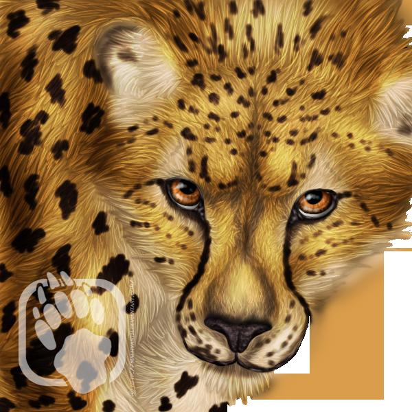 Avatars - Renekai's Laolin