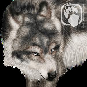 Avatars - Navywolf's Aarocayne