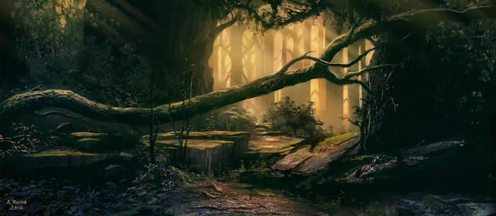 Old Forest A (Patreon IP03)