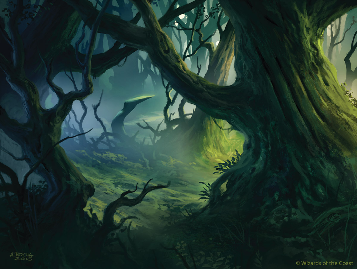 mtg shadows over innistrad basic land forest by