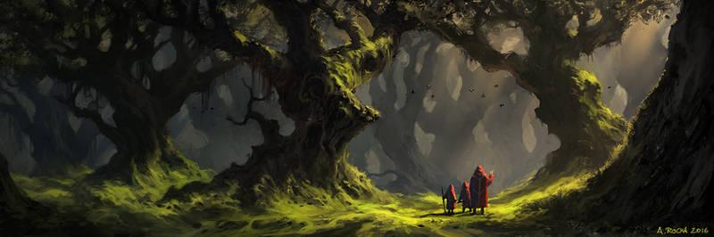 Enchanted Forest II