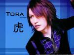 Tora blue 1024x768