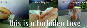 Forbiden Love Cat X Fox